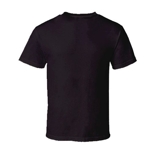 Custom Printed Alstyle 5301N Deluxe Adult Jersey Fitted Crew Neck T-Shirt - 10 - Back View | ThatShirt