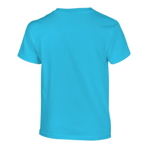 Custom Printed Fruit of the Loom 3930BR Youth Heavy Cotton HD T-Shirt - Aquatic Blue - Back View   ThatShirt