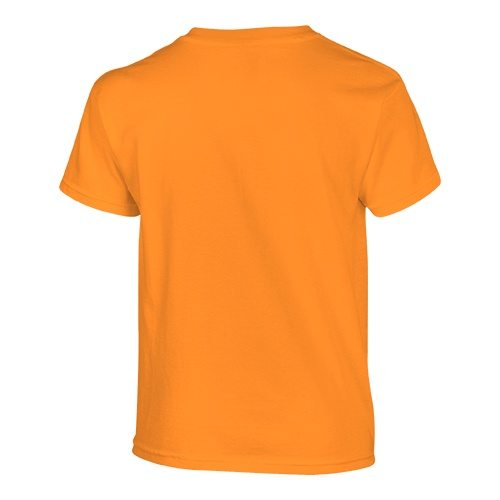 Custom Printed Gildan 500B Heavy Cotton Youth T-Shirt - 36 - Back View | ThatShirt