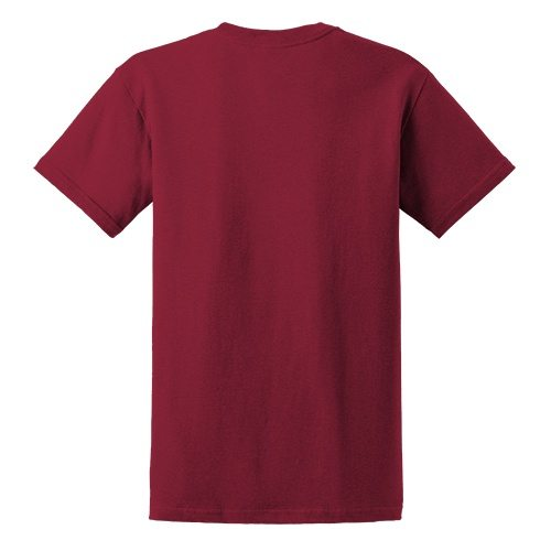 Custom Printed Gildan 6400 / 64000 SoftStyle Ring Spun T-Shirt - 1 - Back View | ThatShirt