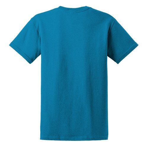 Custom Printed Gildan 6400 / 64000 SoftStyle Ring Spun T-Shirt - 2 - Back View | ThatShirt