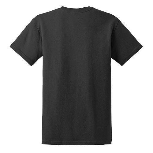Custom Printed Gildan 6400 / 64000 SoftStyle Ring Spun T-Shirt - 4 - Back View | ThatShirt