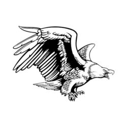 ThatShirt T-Shirt Clip Art - Eagles - EAGLE12V4BW