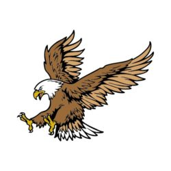 ThatShirt T-Shirt Clip Art - Eagles - EAGLEJK16