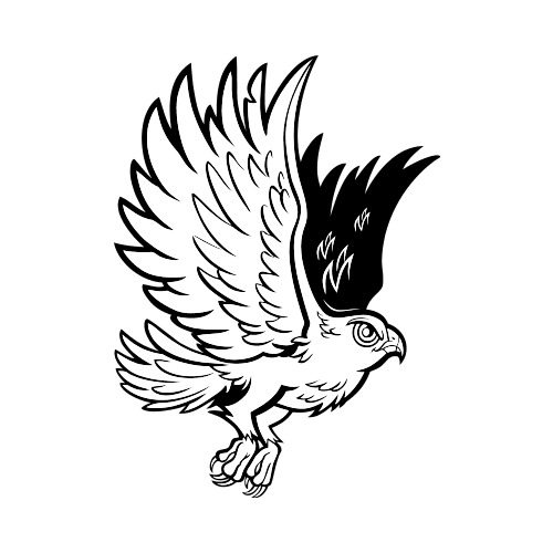Hawk Clipart Shirts