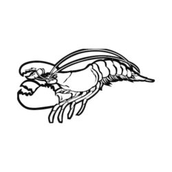 ThatShirt T-Shirt Clip Art - Lobsters - LOBSTER-SIDE-BW