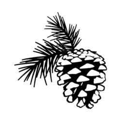 ThatShirt T-Shirt Clip Art - Outdoors - PINE_CONE_BW