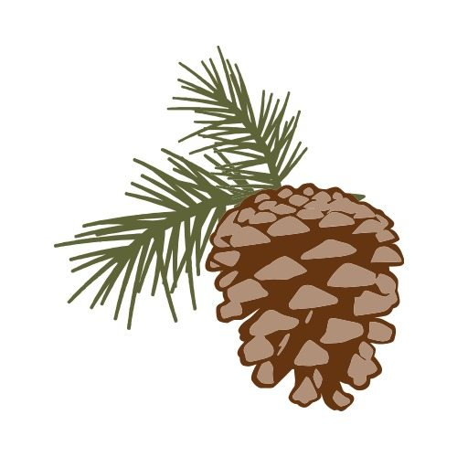 pine cone c clip art get started at thatshirt rh thatshirt com pine cone clipart black and white pine cone clipart images