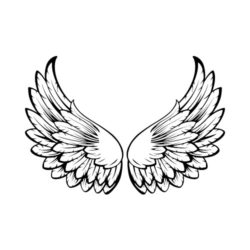 ThatShirt T-Shirt Clip Art - Wings - ES3WING15BW