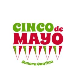 thatshirt t-shirt design ideas - Cinco de Mayo - CDM FlagBanner
