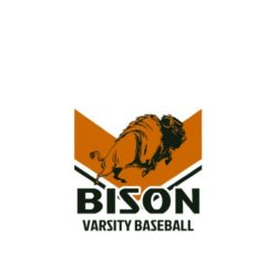 thatshirt t-shirt design ideas - Mascots - Bison